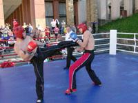 Otwarty Puchar Polski w Kickboxingu w Krynicy