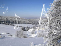 Muzyka w Zimowym SPA