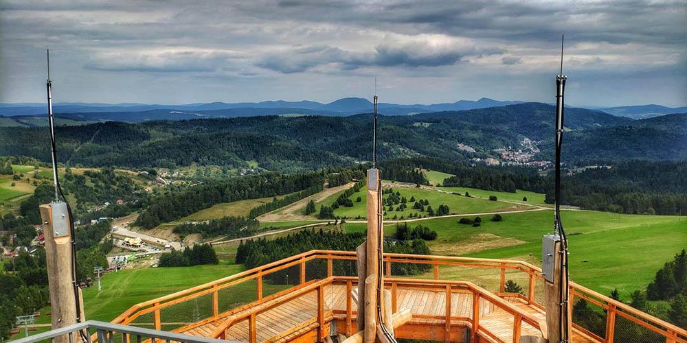 widok z wieży widokowej