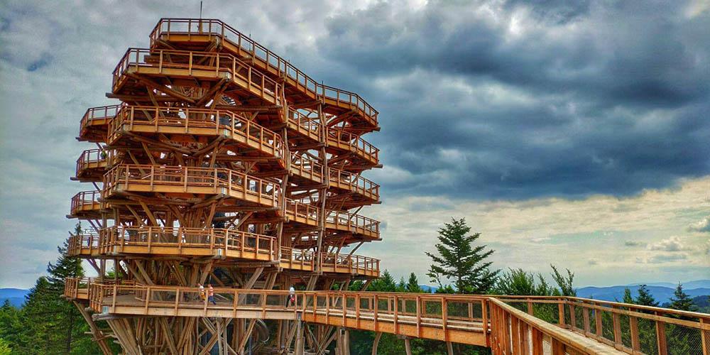 wieża widokowa Krynica Słotwiny